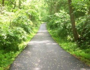 Bicycle and Cart Paths